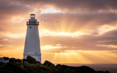 Kangaroo Island's great southern wonders