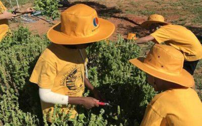 The EON Foundation – Helping indigenous communities around Australia