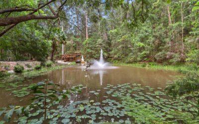 Tweed Valley – A relaxing Tweed Heads holiday alternative