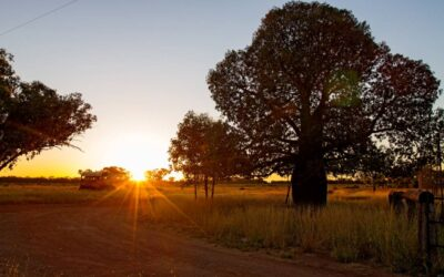 Six unmissable Outback Queensland attractions