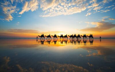 Dolphins, dinosaurs and sunset drinks in Broome, WA