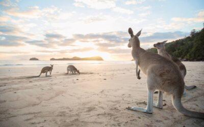 Ten best beaches in Queensland