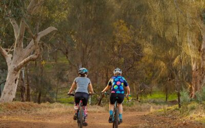 Wagga wanderings: Where to eat, drink and explore
