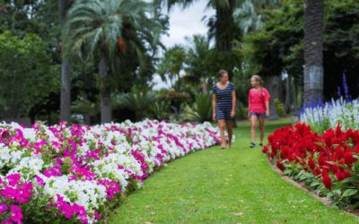 Garden for Good 2020 in Toowoomba