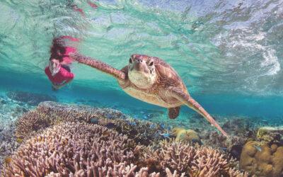 Bundaberg: Queensland's sweetest city