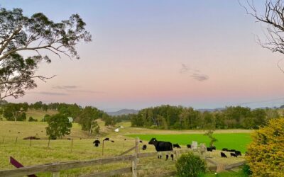 Fall in love with the country in Gloucester NSW