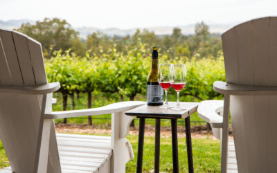 Raise a glass to these lavish winery stays in South Australia