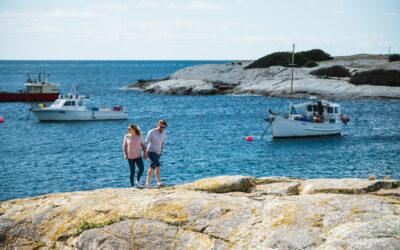 Explore the east coast of Tasmania: Bicheno to Coles Bay
