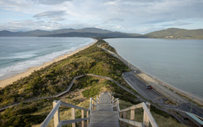 Hobart to Bruny Island: an essential side trip on your Tasmanian adventure