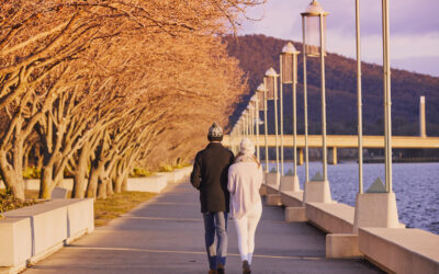 Fill your weekend with these awesome Canberra activities