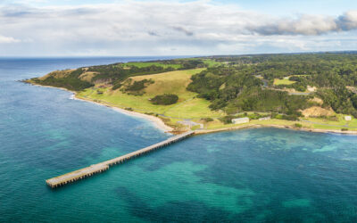 Things to do on King Island all year round